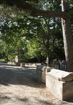 Visites guidées - Excursions